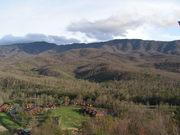 View of the Smokies from Webb Mtn - Spring '09