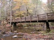 Bridge/Fall