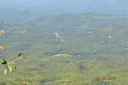 Mt Cammerer