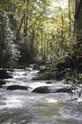Smoky Mountain and Fall Creek Falls October 2009