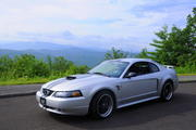 The Flyin Mare on the Foothills Parkway