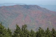 Mt. Camerer
