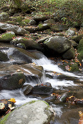 Roaring Forks River