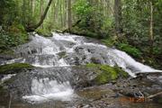 Just Water Falls