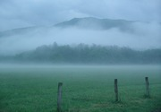 Richards Challenge: Fog