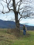 Walking through Cades Cove with my dad