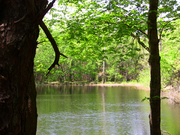 gourley's pond