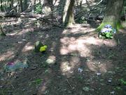Post Cemetery 2