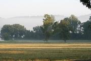 Mist a3
