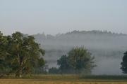 Mist a2