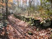 IC Rock wall
