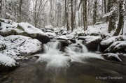 Cosby Creek  March 2013