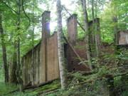 Welch Ridge - Hazel Creek Loop