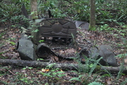 IMG_0529 car across from Gunter cemetary