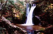 Wolf Creek Falls