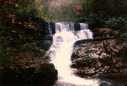 Stair Step Falls below Wolf Creek Falls