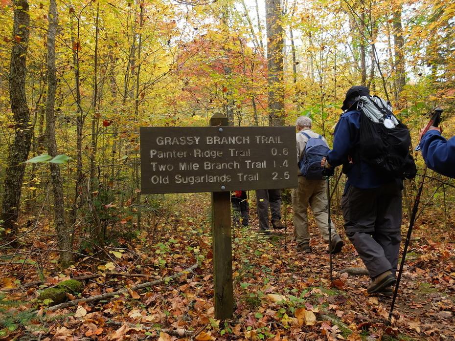Gosmokies Hike 10/25/2015