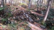 Bullhead Trail