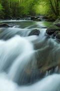 Tremont Stream Cascade