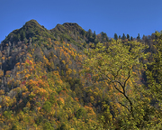 Chimney Tops In The Fall