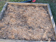 Garden Bed Square