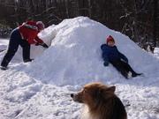 Snowfall &  Christmas 2009 030