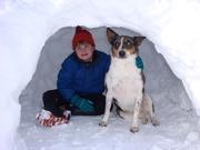Snowfall &  Christmas 2009 034