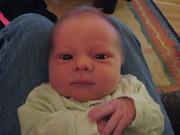 Liam - One Week Old