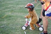 Baby Cub Crosser