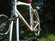 Raleigh RX 1.0