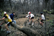 Old CX Photos From Chicago