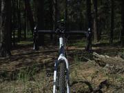 Pro-Lite Piemonte II based cx bike