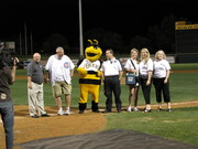 Bees Game 052