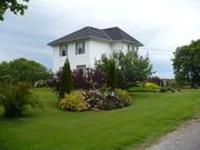 the farm in summer, 2009
