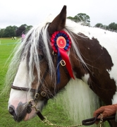 1st at Crowland Show 2007