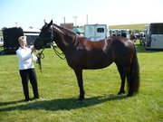 Welsh show Aug 2010