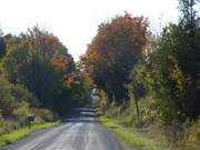 Our street in the Fall
