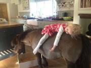 Anyone Need a Babysitter? ;-)