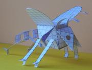Flatfold dragonfly.