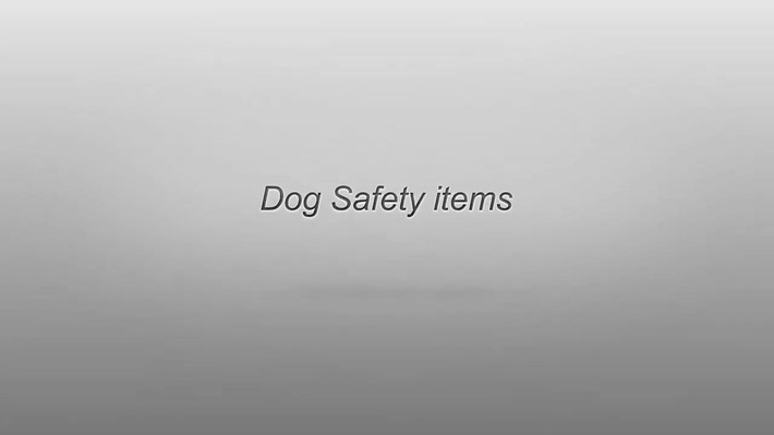 Pet Dog Flat Collar: Why We Use It