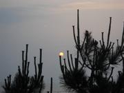 Sunset Full Moon 008