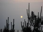 Sunset Full Moon 006