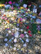 Reiki Peace Garden