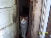 Jarrod at the Door