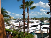 Boat Shopping...