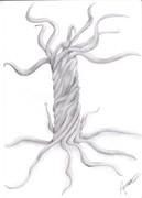 Dreamt Tree