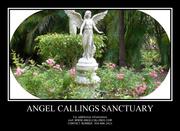 Angel Callings Sanctuary's grounds