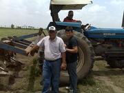 subsolando el terreno para siembra piñas