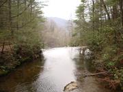 Trout stream in North Carolina
