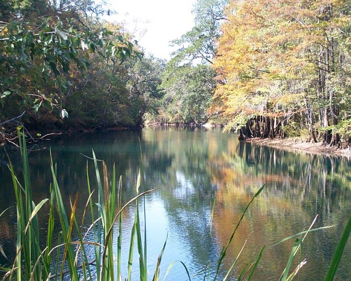 holmes creek  vernon fl